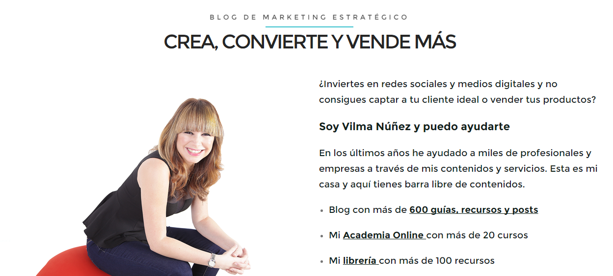 vilmanuñez marketing